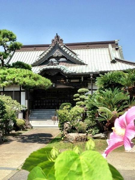 浄泉寺 じょうせんじ 浄泉寺 (腰越) かつては寺子屋としても栄えた古刹 浄泉...  鎌倉観光